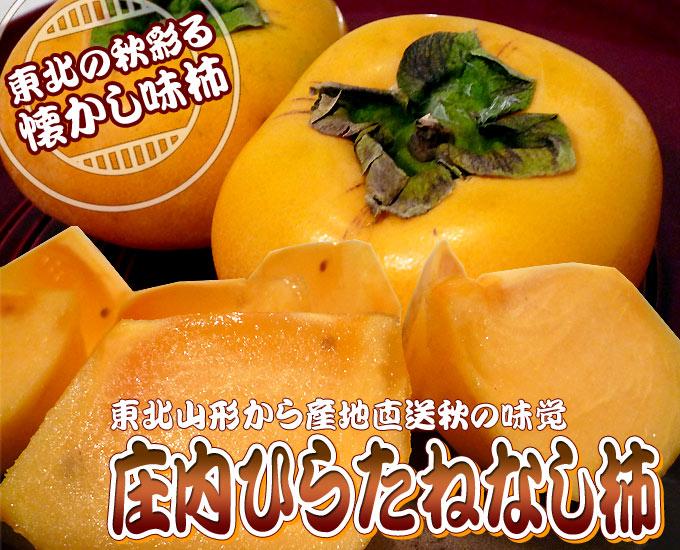 丸松青果 平種なし柿